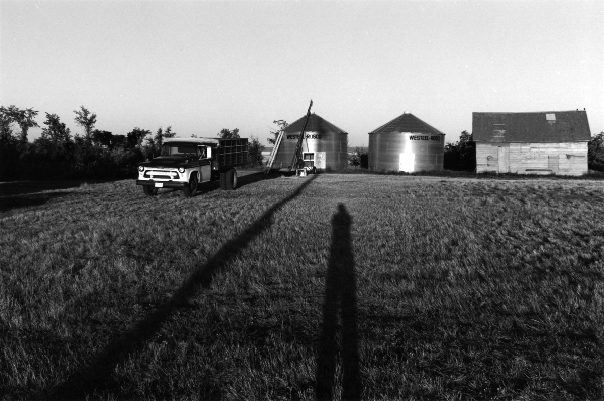 Shadowsfarmyard copy